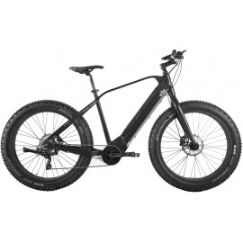 E-bike model E-SUMO - Mat Sort