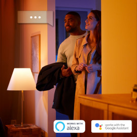 Philips Hue Fair loftslampe - Bluetooth - 8718696175132